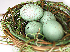 It's Not Too Late To Grow Your 2008 Nest Egg