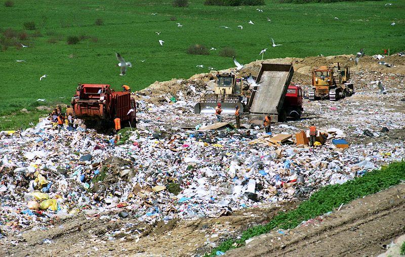 Emerging Innovation to Decrease Packaging Waste
